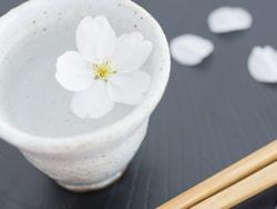 お花見で活躍する芋焼酎!ラベルと味わいが春らしい厳選の6銘柄