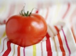 トマトだけで簡単フルコース!美と健康のリコピンたっぷりレシピ