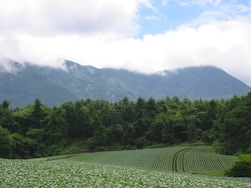 大自然を満喫できる。北軽井沢のおすすめ観光スポット10選