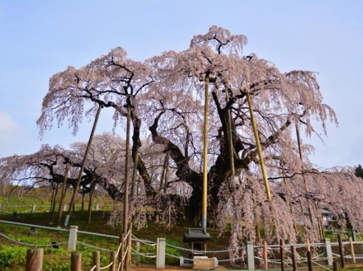 東日本大震災から5年、復興支援ができるサイト10選